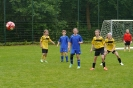 Pokalfinale 2014:  E- Mädchen -1.FC  Ohmstede